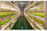 Представляем светодиоды для роста растений производства компании LG Innotek